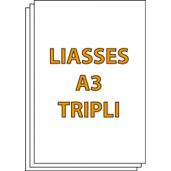 Liasses autocopiantes A3 Triplicata